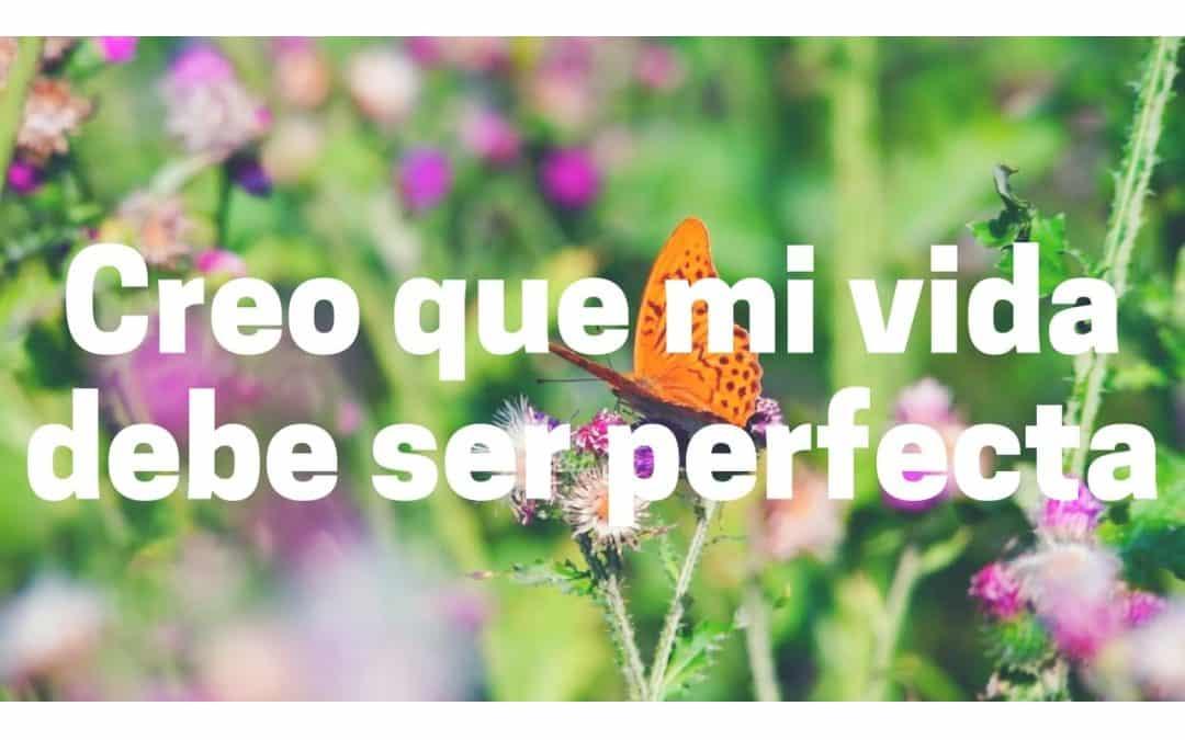 Creo que mi vida debe ser perfecta